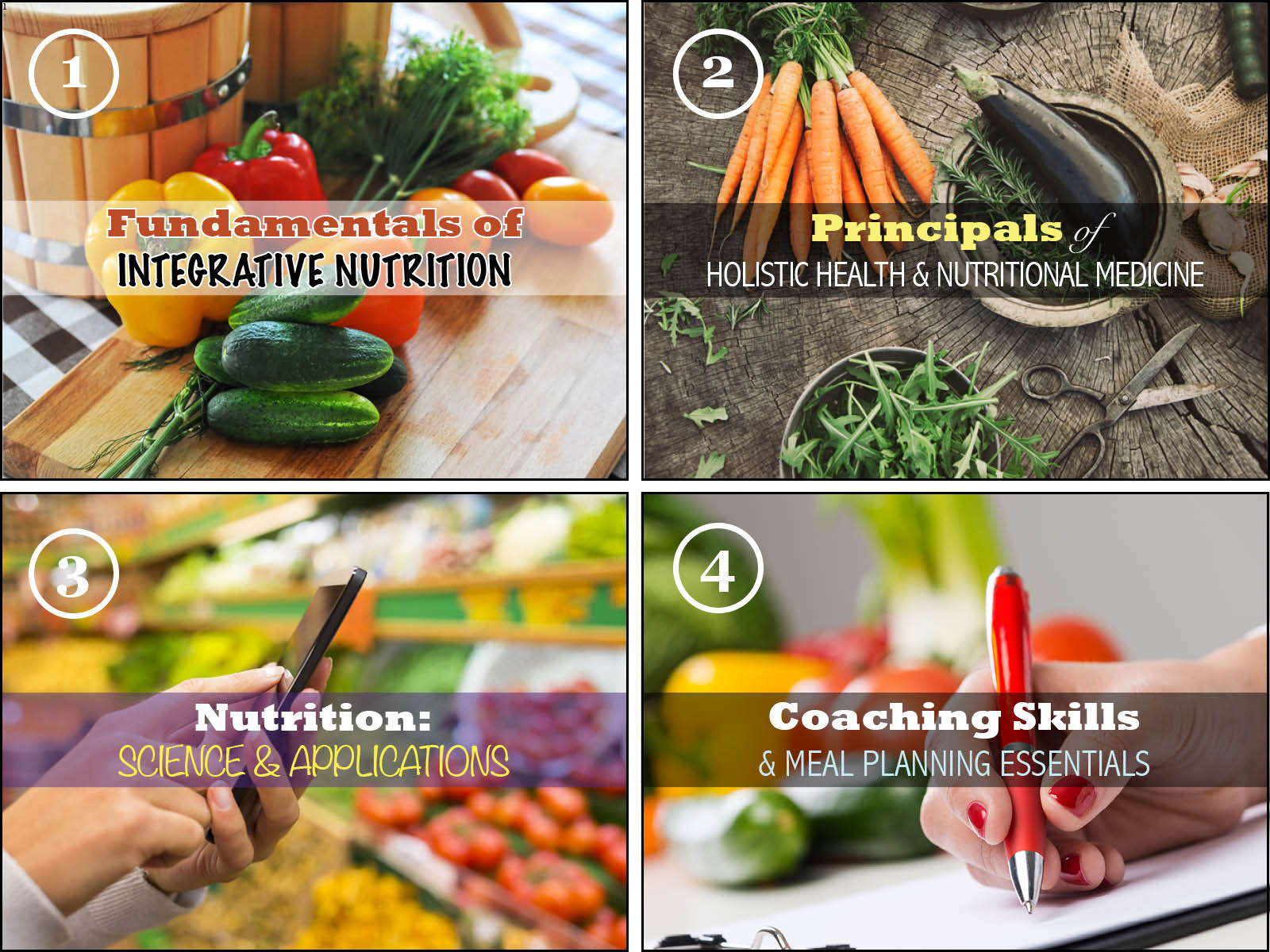 Holistic Nutrition Health Coach Certification Nutraphoria School