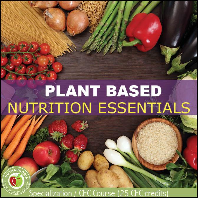 vegetarian nutrition - nutraphoria school of holistic nutrition