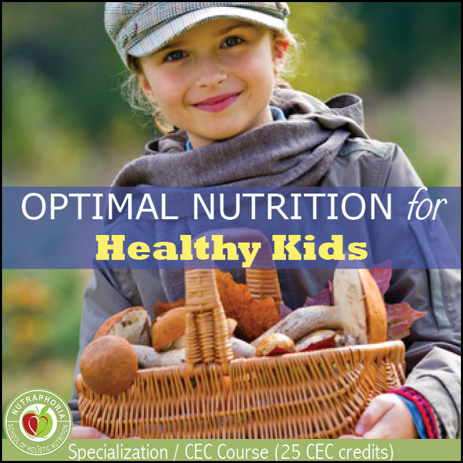childhood nutrition course nutraphoria school of holsitic nutrition