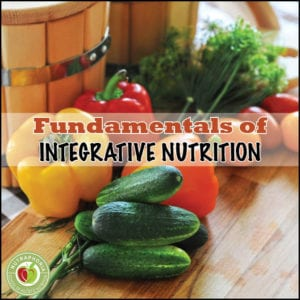 fundamentals of integrative nutrition course nutraphoria school of holistic nutrition