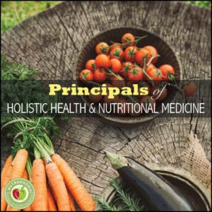 nutraphoria online holsitic nutrition course