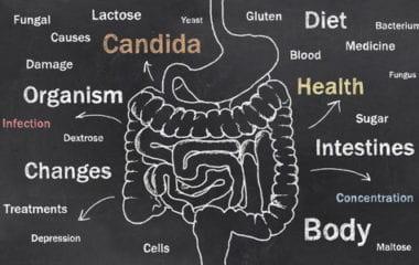 Candida Overgrowth Nutraphoria