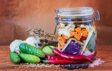 Lacto-fermentation Nutraphoria