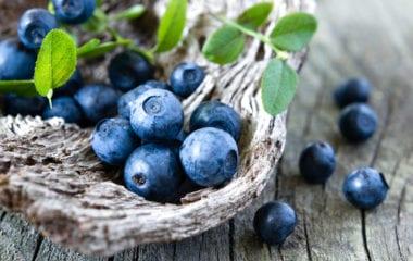 Wild Blueberries Nutraphoria