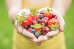 Mixed Fruit Nutraphoria